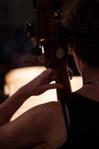 orkestern Hedwig kontra bakifrån web