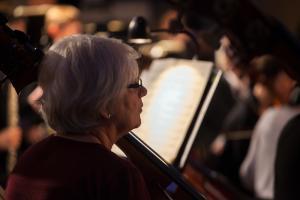 orkestern Hervor kontrabas web