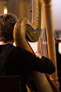 orkestern harpa web