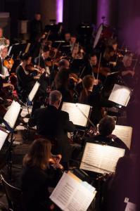 orkestern stråket 1 web