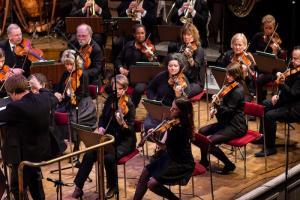 orkestern stråket 4 web