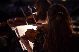 orkestern violin bakifrån web